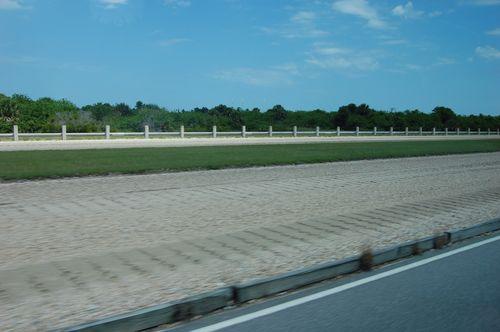 corsie (sono 2 separate dall'erba)