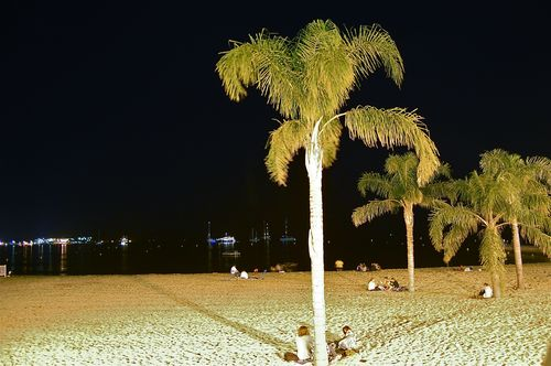 spiaggia by night