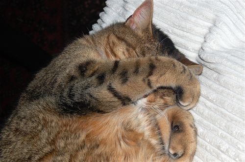 che sonnoooo!!!!
