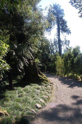 giardino botanico