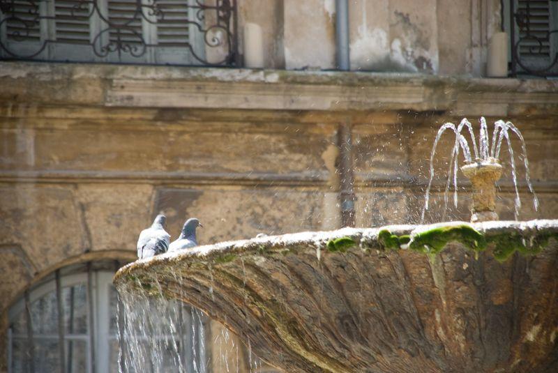 fontaine albertas