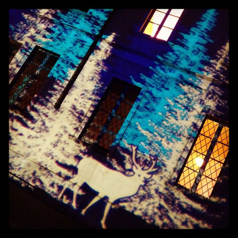 image from farm8.staticflickr.com